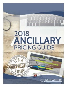 2018 Ancillary Pricing Guide Image