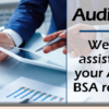 Let AuditLink help with your ACH and BSA reviews!