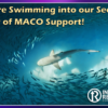 We're Swimming into our Second Year of MACO Support!