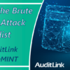Reminder: Presenting the Brute Force BIN Attack Checklist from AuditLink and SettleMINT