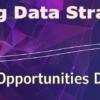 Proving Data Strategies: Lending Opportunities Dashboard