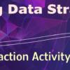 Proving Data Strategies: Transaction Activity Validation