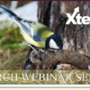 Next Week's Xtend Webinars
