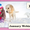 Don't Miss This Week's Webinars!
