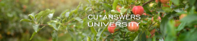Take a Look at the CU*Answers University Courses for September!