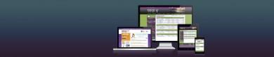 Custom Branding for Online Banking
