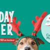 Spreading the Holiday Cheer with 50% Off Custom Web and Mobile Banners!
